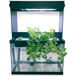 Counter AquaPonics with Grow Light
