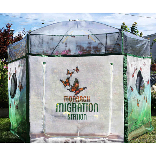 Monarch Migation Station - Backyard Monarch Migration Stations, 8 ft. x 7 ft. Butterfly Learning Center